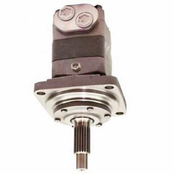Gehl 603 Hydraulic Final Drive Motor
