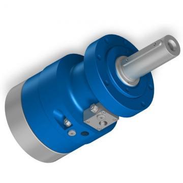 Gehl 353 Hydraulic Final Drive Motor