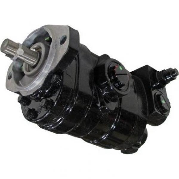 Gleaner A65 Reman Hydraulic Final Drive Motor #1 image