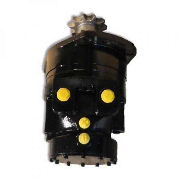 Gleaner A66 Reman Hydraulic Final Drive Motor #2 image