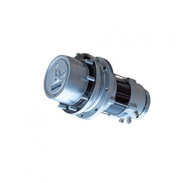 Massey-Ferguson 9555 Reman Hydraulic Final Drive Motor #1 image