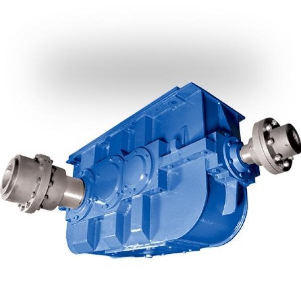 Massey-Ferguson 71412497 Reman Hydraulic Final Drive Motor #1 image