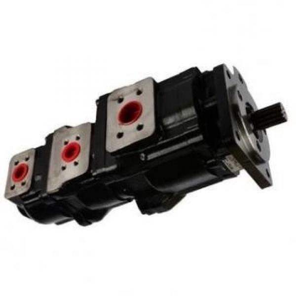 Case 87600263 Hydraulic Final Drive Motor #1 image