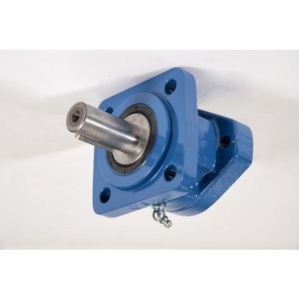 Case 9060B Hydraulic Final Drive Motor #1 image