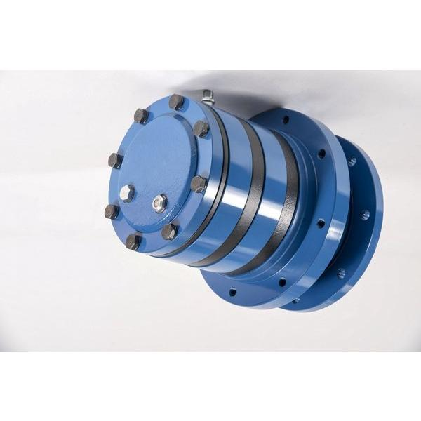 Case 155817A1 Hydraulic Final Drive Motor #1 image