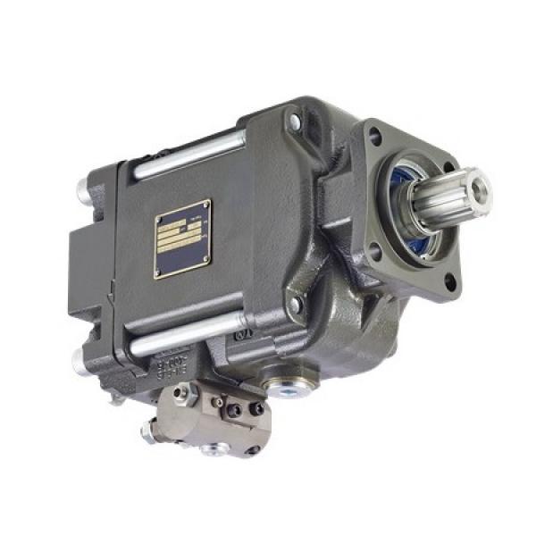 Case 84565749R Reman Hydraulic Final Drive Motor #1 image
