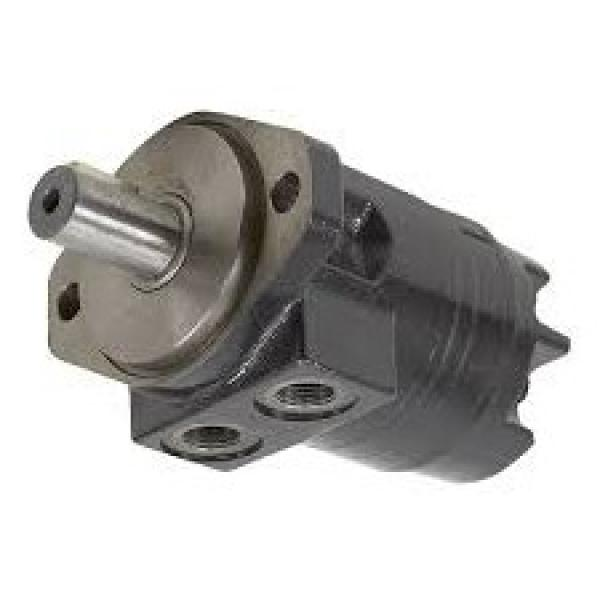 Case 876020262 Hydraulic Final Drive Motor #1 image