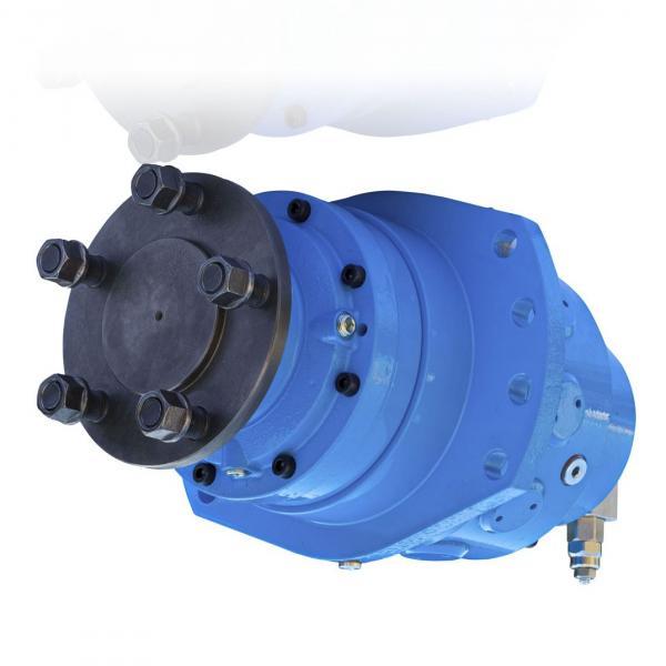 Case 84565750R Reman Hydraulic Final Drive Motor #1 image