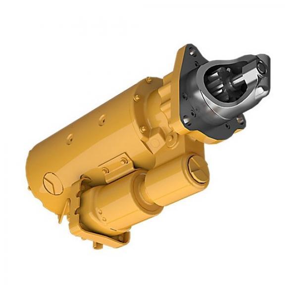 Caterpillar 283-6030 Hydraulic Final Drive Motor #1 image
